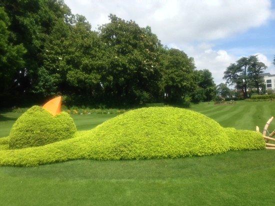 sleeping chicken - Picture of Jardin des Plantes, Nantes - TripAdvisor