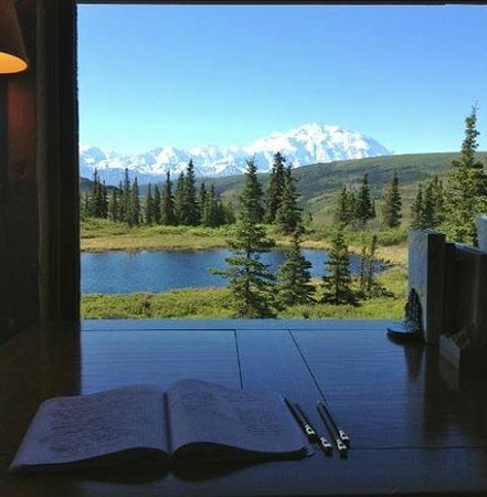Camp Denali: View from the Camp Library