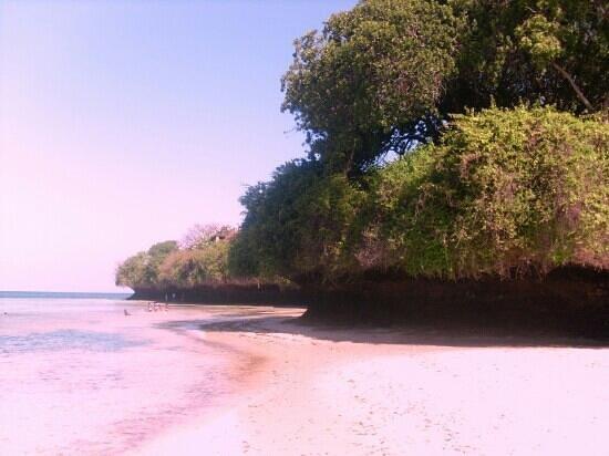 Province de la côte, Kenya: Marine Park