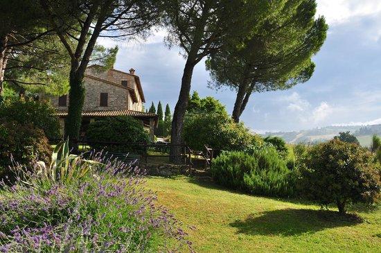 Agriturismo Casale dei Frontini: Veduta del giardino
