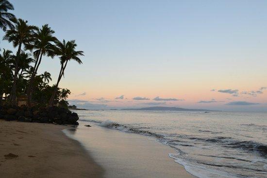 Maui Sunseeker LGBT Resort : Beach across the street from Maui Sunseeker