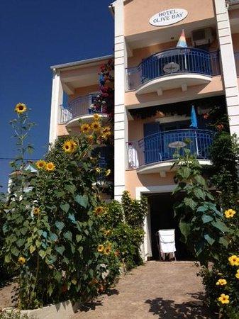 Photo of Olive Bay Hotel Agia Efimia
