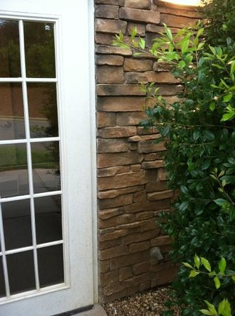 Sonesta ES Suites Charlotte : bushes by door, that didn't close