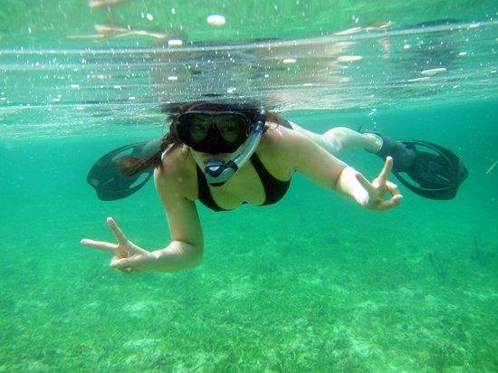 Bocas Villas: clear water, sea grass