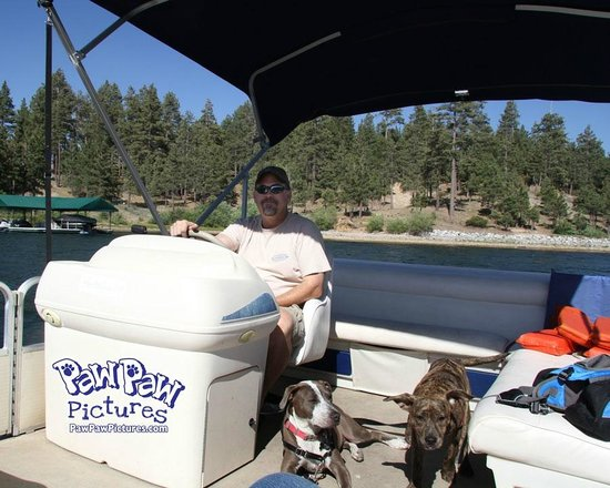 Pine Knot Guest Ranch: Blue & Stitch with their Daddy at Big Bear Lake