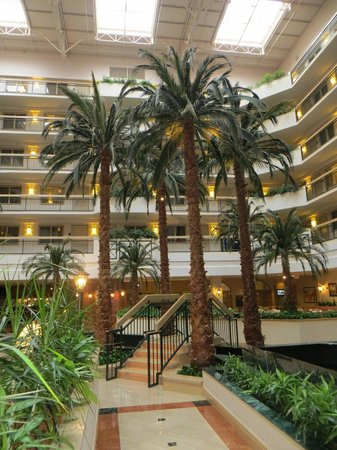 Embassy Suites by Hilton Houston Near the Galleria: Hotel lobby