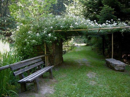 Giardino Botanico Alpino di Pietra Corva: angolo di relax