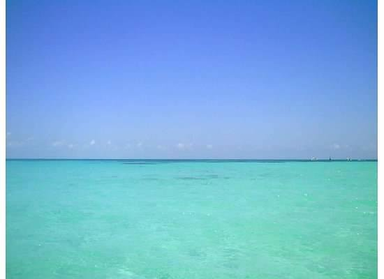EcoColors Tours : Lunch at Isla Mujeres