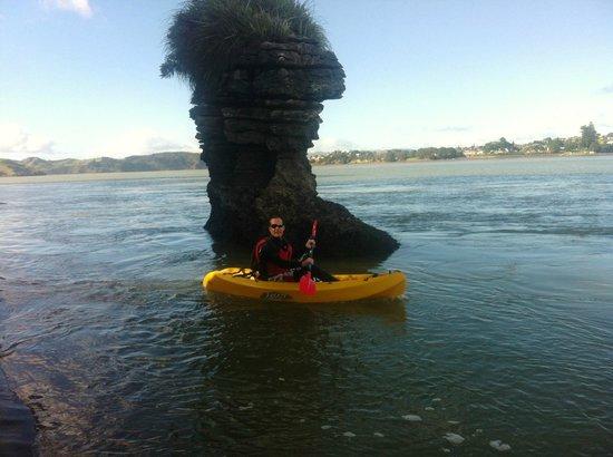 Raglan Scenic Tours: Raglan Harbour Kayak tour