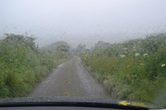 Old Kenmare Road: Typical Visibility in Irish Rain :(