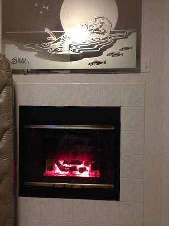 Shilo Inn Suites Hotel - Seaside Oceanfront: the warmer. Does not burn wood or anything else.