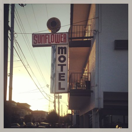 Sunflower Motel: Sign