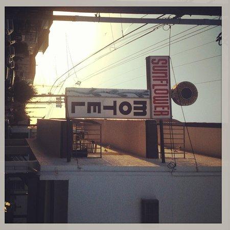 Sunflower Motel: Sign