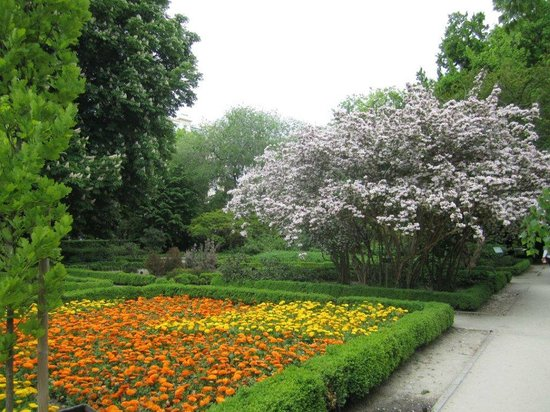 May 2013 picture of royal botanic garden real jardin for Botanico jardin