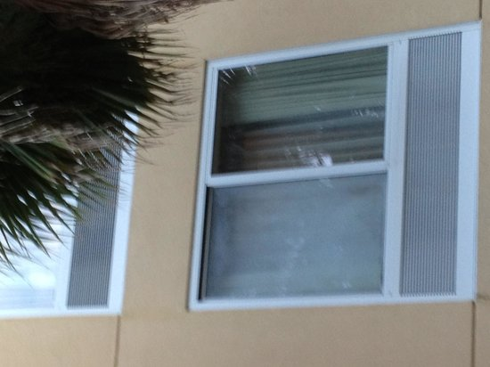 Fairfield Inn & Suites Jacksonville Butler Boulevard: Up close of room window.