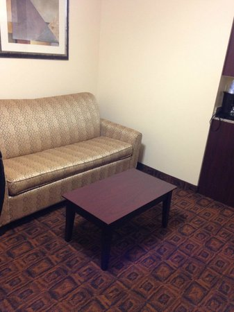 Holiday Inn Express Suites Mason: Firm sofa with coffee table