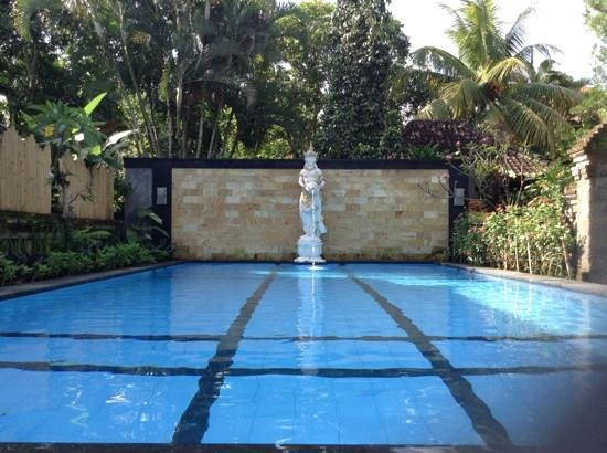 Gunung Merta Bungalows: pool