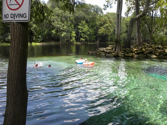 Ginnie Springs: Devil's Eye and Santa Fe River