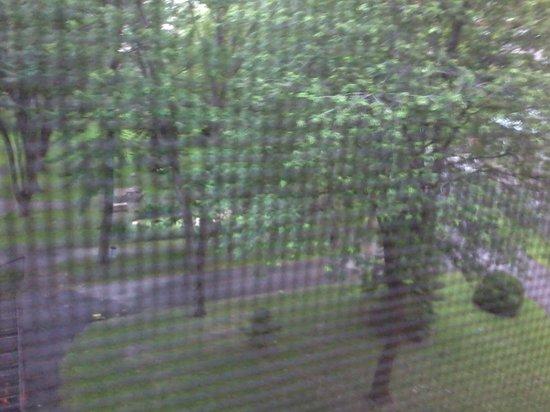 Grey Nuns Residence: courtyard through the screen