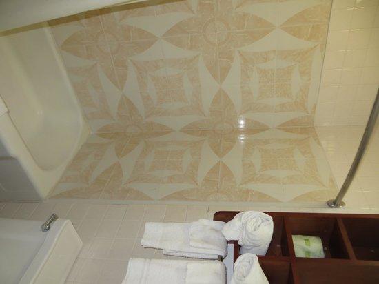 Budget Inn Palmyra: Bathroom
