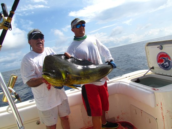 Sport Fish Panama Island Lodge: Armand's Beautiful 50lb Dorado