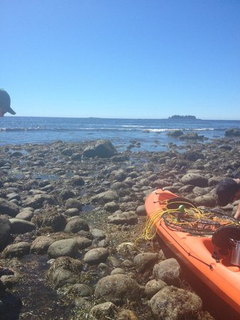 Mussel Beach Campground: Fishing off the kayak out front