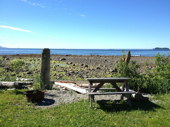 Mussel Beach Campground: View from the campsite