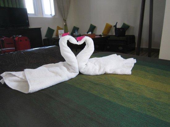 Riad Dar L'Oussia : Swans!