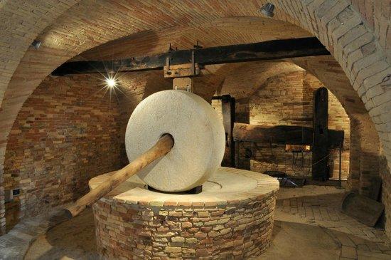 Museo dell'Olio di Cantinarte