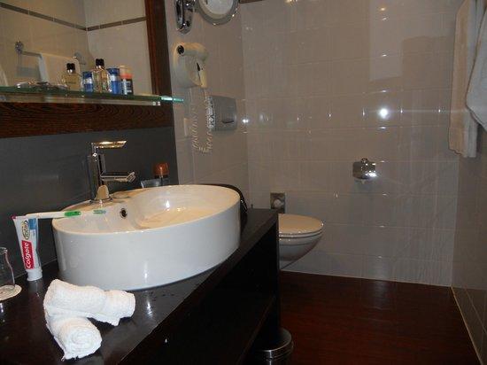 Hotel Auteuil - Manotel Geneva : bagno!