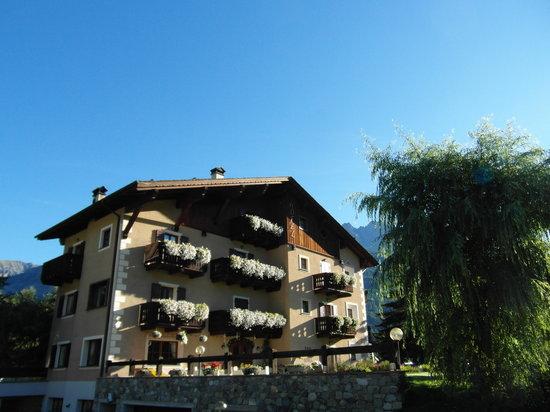 Hotel Alpi & Golf: White Flowers
