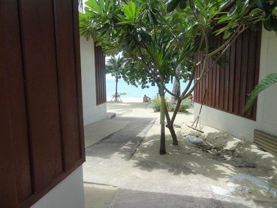 Lamai Coconut Beach Resort: bungalow 1 reihe