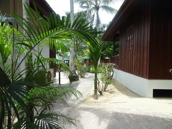 Lamai Coconut Beach Resort: bungalow