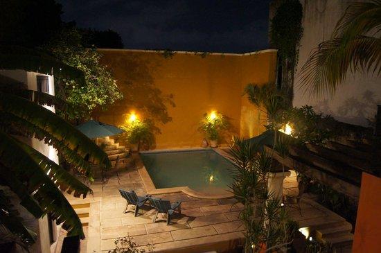 Luz En Yucatan: The Pool from Room