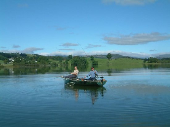 Esthwaite water trout fishery: What a beautiful fishery