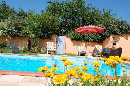 Gîtes des Noisetiers : espace piscine