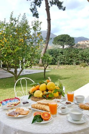 Bed & Breakfast Torremerlata 사진