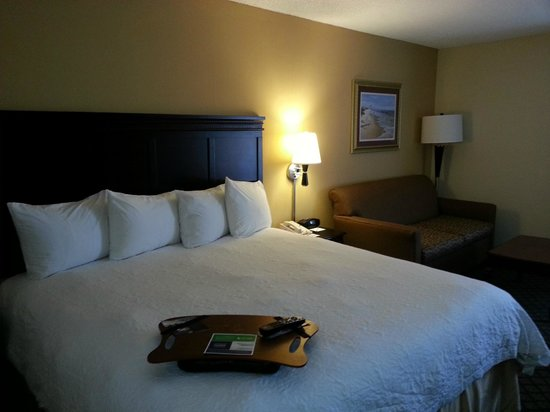 Hampton Inn Jupiter/Juno Beach : King bed