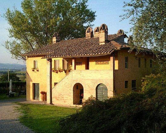 """Fattoria dei Comignoli: Casa """"Comignoli"""", un tempo antico frantoio a pietra di olive, nel 1600"""