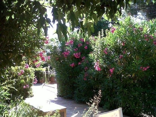 La Ferme d'Augustin : espaces verts