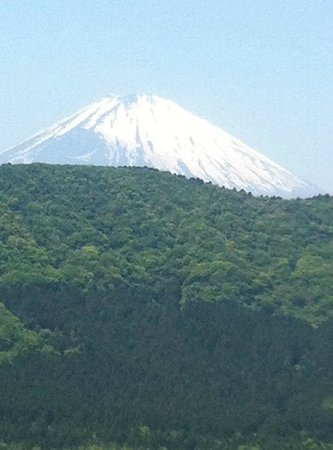 Palace Hotel Hakone : Mount Fuji from rooftop