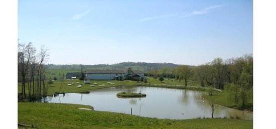 Guggisberg Swiss Inn: pond view