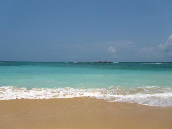 SurfCity Guesthouse : Vue de la plage