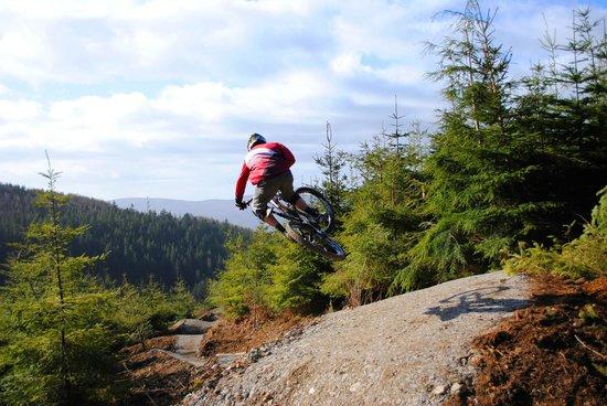 Rostrevor Mountain Bike Trails: Mega Mission, Rostrevor, Think Studio