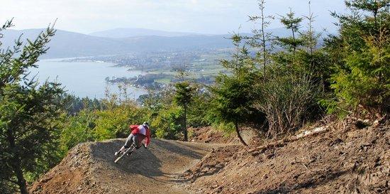 Rostrevor Mountain Bike Trails: Mission Mission, Think Studio