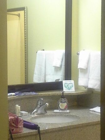 SpringHill Suites by Marriott Annapolis: Bathroom
