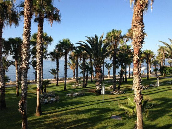 Louis Phaethon Beach: View from our room