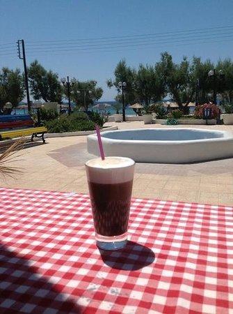 Scoops gelato cafe: freddo
