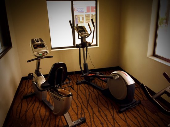 Econo Lodge Inn & Suites : Fitness Center