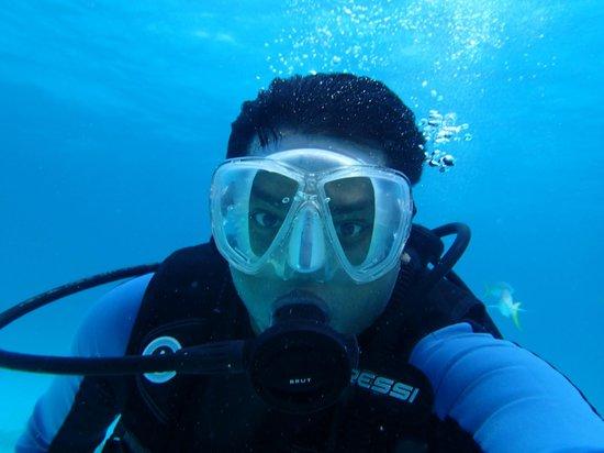 Manta Divers Cancun: Day 2 dive